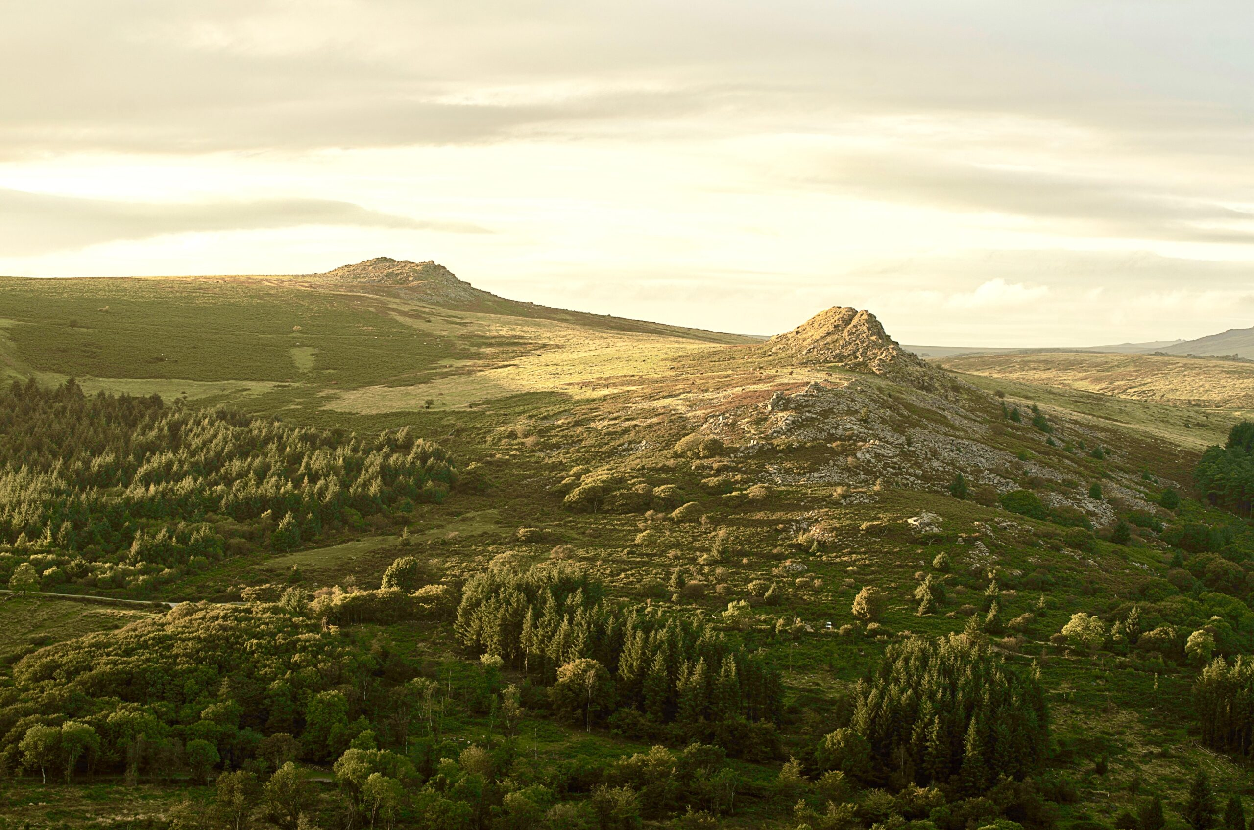 Sustainable business - a photo of Dartmoor